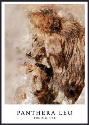Løve plakat