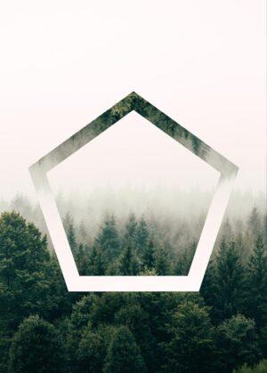 Pentagonal Forest