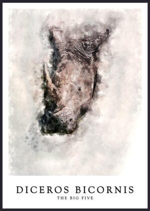 Næsehorn plakat, The big five