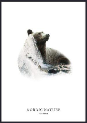 Bjørn med flod som baggrund