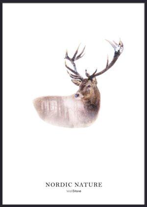 Nordic Nature Hjort